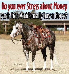 Accidentally buy a horse